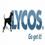 Zoek Opdrachten ZoekResultaten Lycos